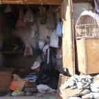 Bazaars of Afghanistan